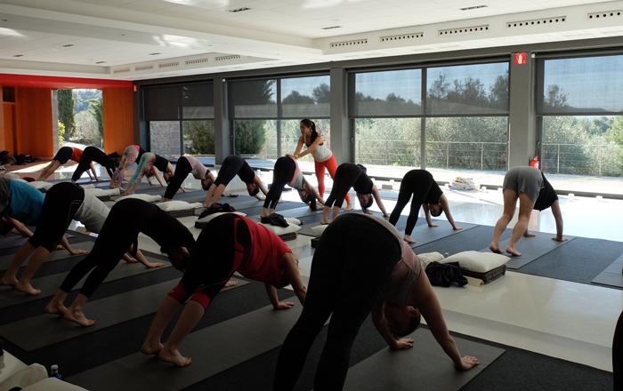 formación para ser profesor de yoga