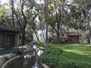 Xuanlanyoga-panchakarma-kairali-village