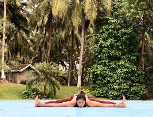 Mi experiencia en Kairali Ayurvedic Healing Village en el Kerala, India