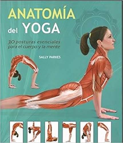 xuanlanyoga_anatomiaSallyParkes