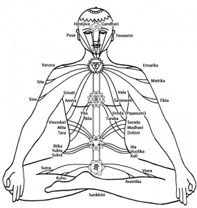 nadis yoga