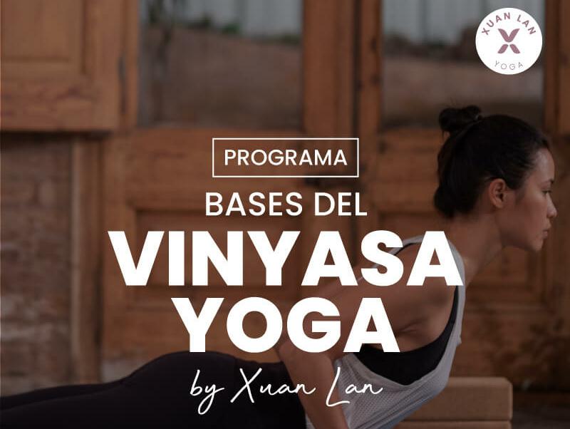 vinyasa yoga curso