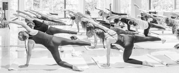 cómo elegir tipo de yoga